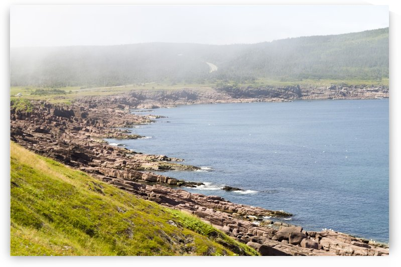 View from Cape Spear Walking trails 7 by Bob Corson