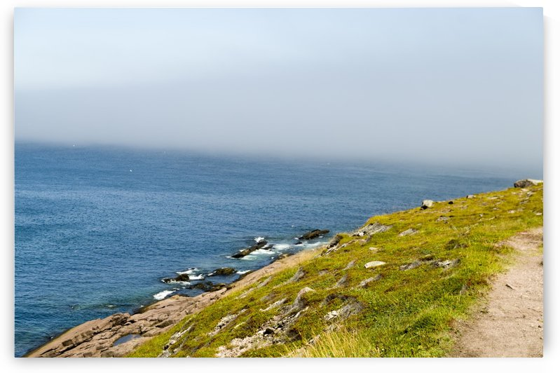 View from Cape Spear Walking trails 5 by Bob Corson