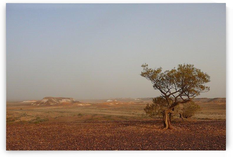The breakaways South Australia by CEDANSBOITE