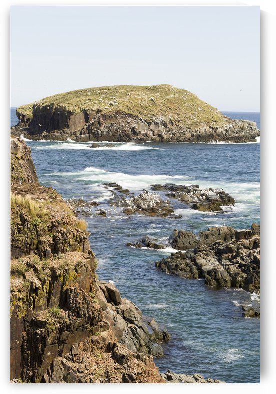 Elliston Newfoundland Coastline 8 by Bob Corson