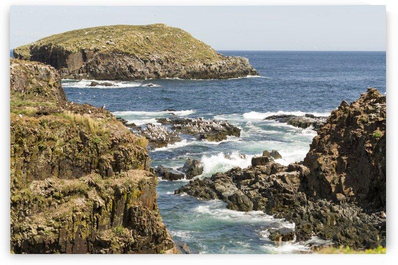 Elliston Newfoundland Coastline 9 by Bob Corson