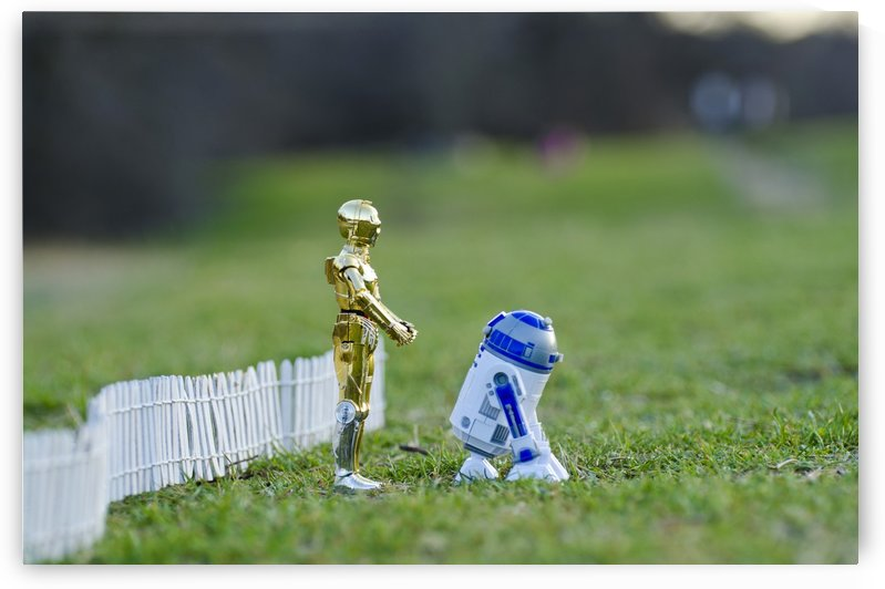 R2d2 and C-3PO Friendship by Juvelyn Green
