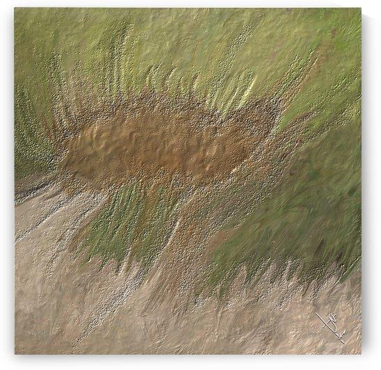 Acid etch by Betty De Oliveira