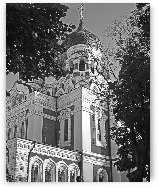 The Alexander Nevsky Cathedral B&W by Gods Eye Candy