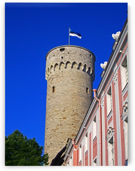 Toompea Castle by Gods Eye Candy