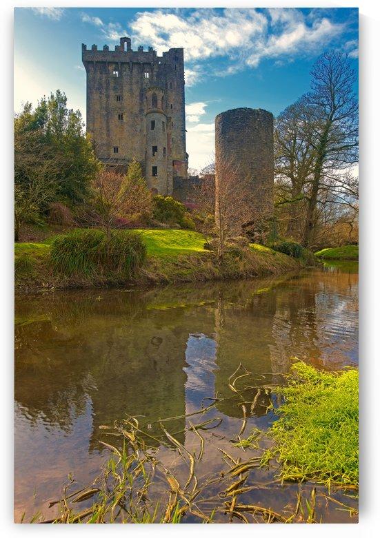 C 377 Blarney Castle by Michael Walsh