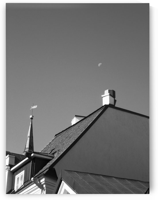 The Moon at Noon B&W by Gods Eye Candy