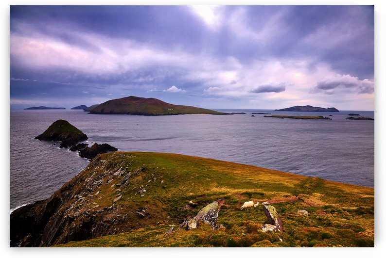 KY 603 Blasket Island View  by Michael Walsh