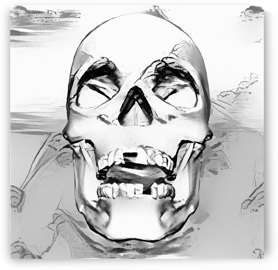 Human Skull by Bruce Rolff