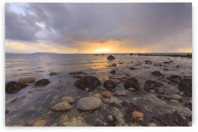G 221 Galway Bay by Michael Walsh