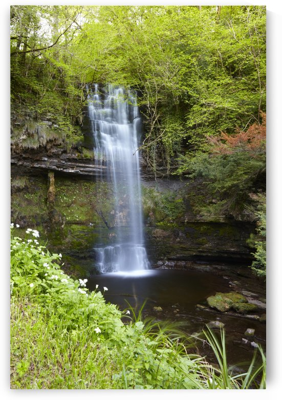 LM 039 Glencar Waterfall by Michael Walsh
