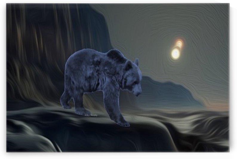 Elder Spirit by R L  Murphy