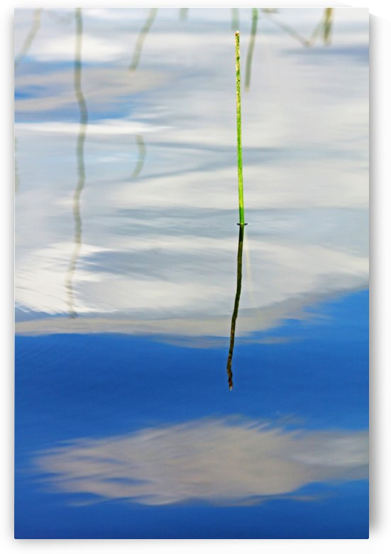 Clouds In The Water Abstract by Deb Oppermann