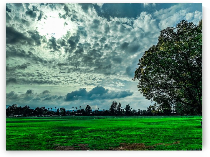 Green Grass Beneath Cloudy Skies by Tom Nolle
