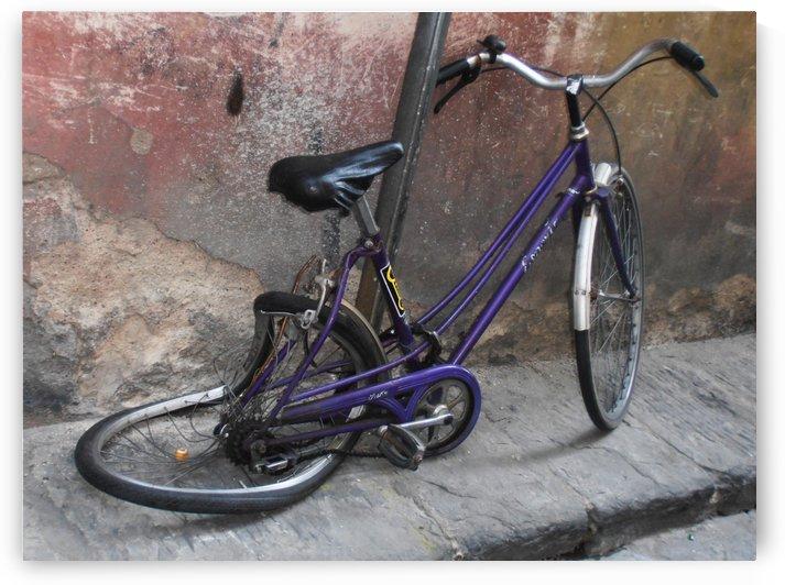 Bicycle Twisted by ANASTASIA SKARLATOUDI