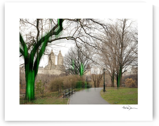 New York - Central park  by Jean-Louis Desrosiers