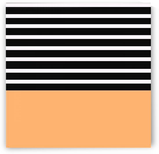 Black & White Stripes with Tangerine Patch by rizu_designs