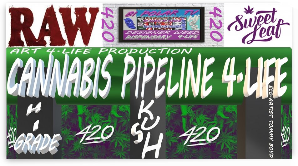 ECO ARTIST TOMMY BOYD CANNABIS PIPELINE 4.LIFE MAIN PAGE BANNER LG by KING THOMAS MIGUEL BOYD