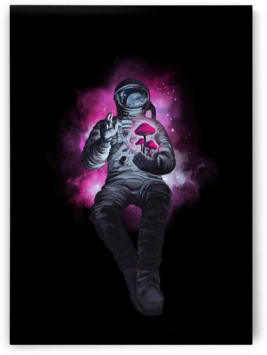 Mushroom Cosmonaut by Sassan Filsoof