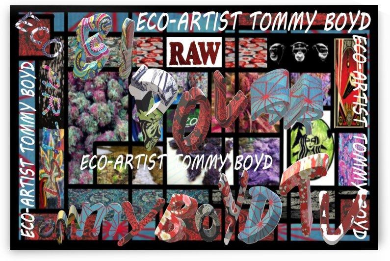 ECO ARTIST TOMMY BOYD BI POLAR TV WEED ART- 1 by KING THOMAS MIGUEL BOYD