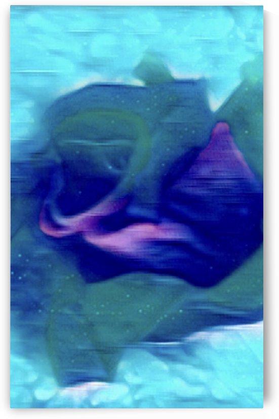 Flora of Paint by Soul Sparkles