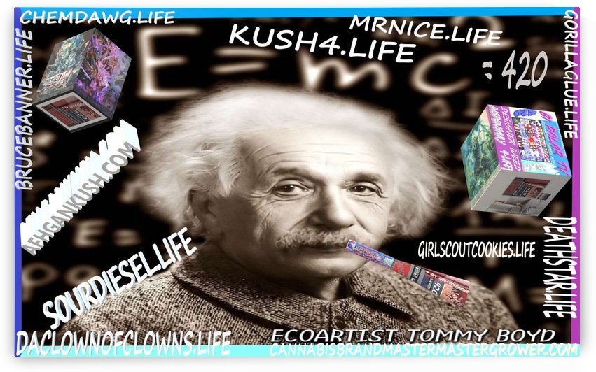 E=MC2=420  by KING THOMAS MIGUEL BOYD