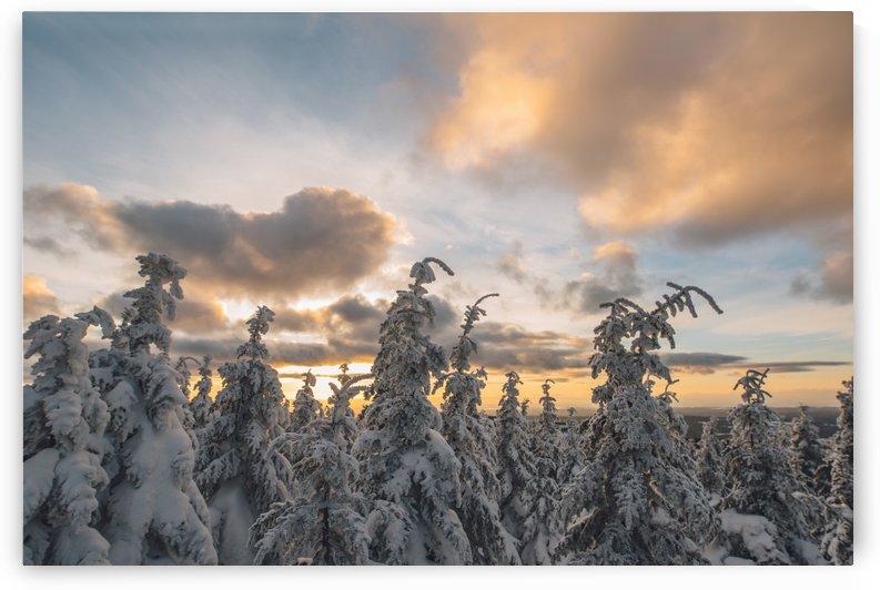 Winter sky by StephanieAllard
