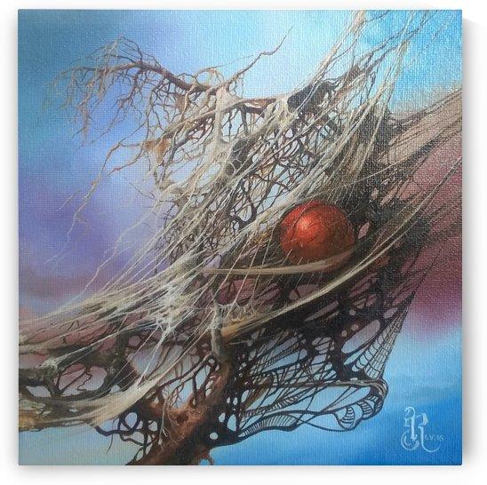Caught in the web of life by Robert Zietara