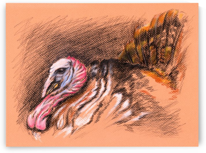 Wild Tom Turkey by MM Anderson