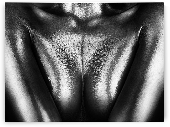 Female nude silver oil close-up 2 by Johan Swanepoel