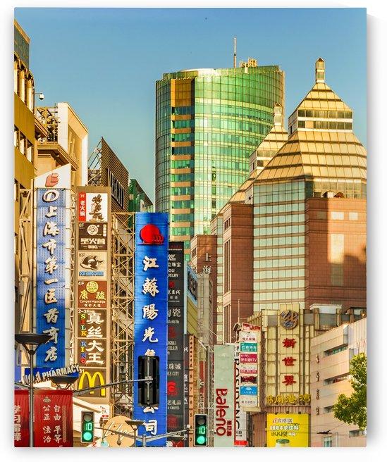 Eclectic Architecture Cityscape Sanghai China by Daniel Ferreia Leites Ciccarino