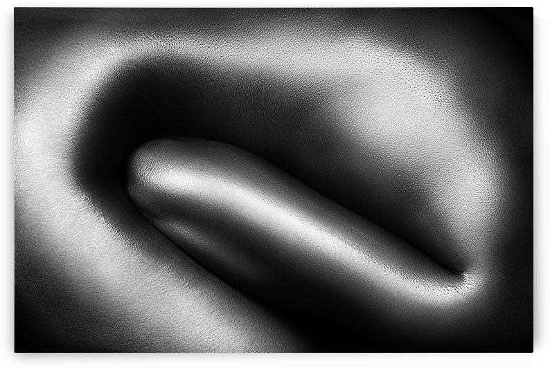 Female nude silver oil close-up 3 by Johan Swanepoel
