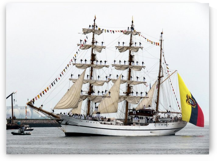 Guayas  by Photography by Janice Drew