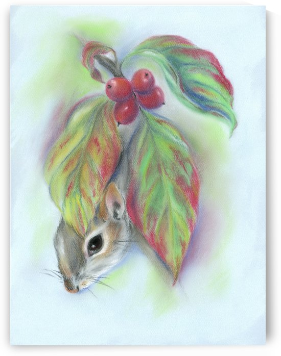 Squirrel in the Autumn Dogwood by MM Anderson