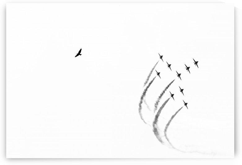Free Flight by hwaishal_art
