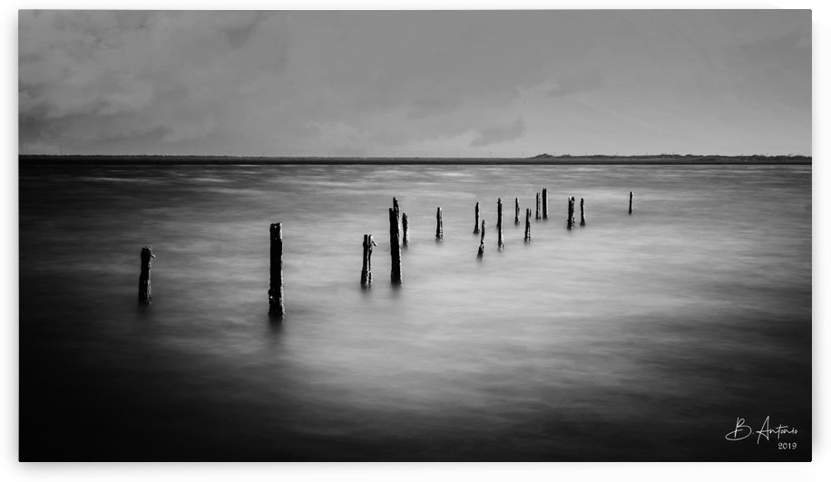Kingston Water Front BW by Bevan Antonio