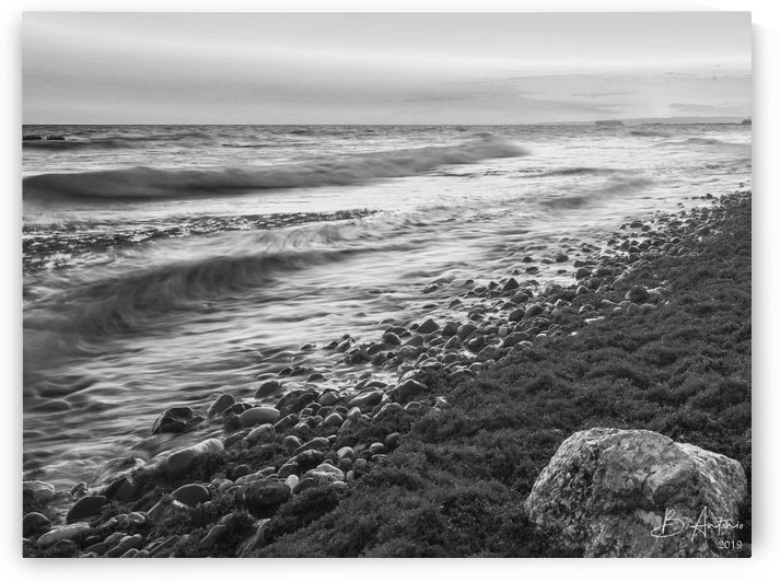 Palisadoes Seascape BW by Bevan Antonio