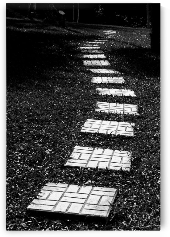 Path to the Unknown  by Bevan Antonio