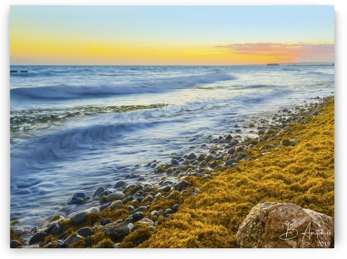 Palisadoes Seascape by Bevan Antonio