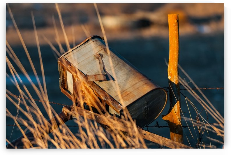 Junk Mail by Garald Horst