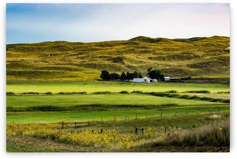 Sandhills Harvested Hay Meadows by Garald Horst