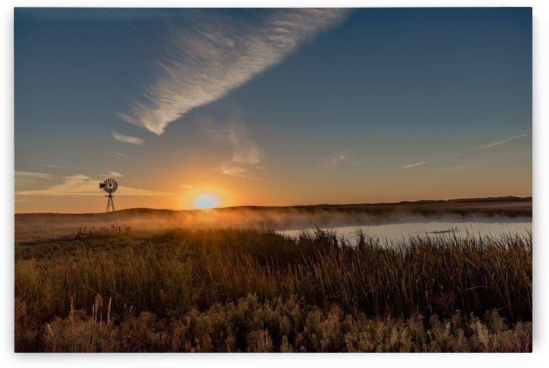 Sunrise Fog in the Sandhills by Garald Horst