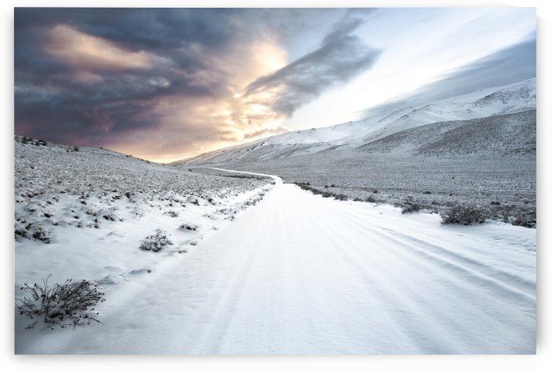 Path by Klaus Balzano