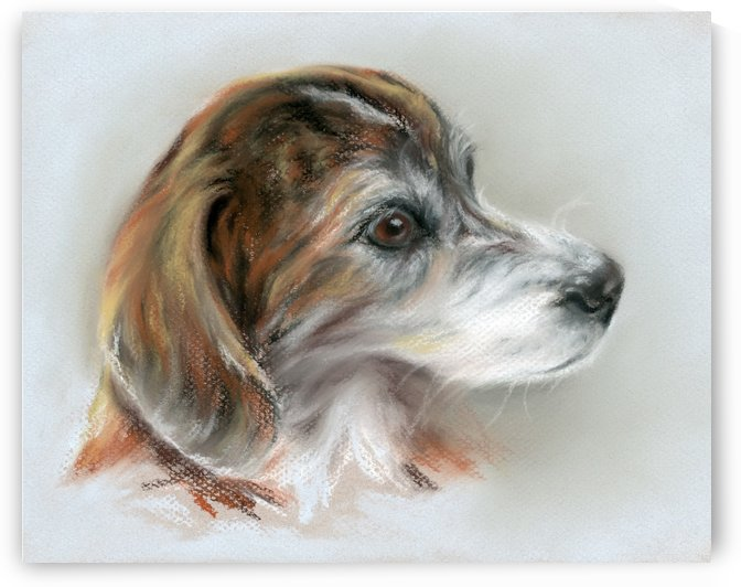 Brindle Beagle Mix Portrait by MM Anderson