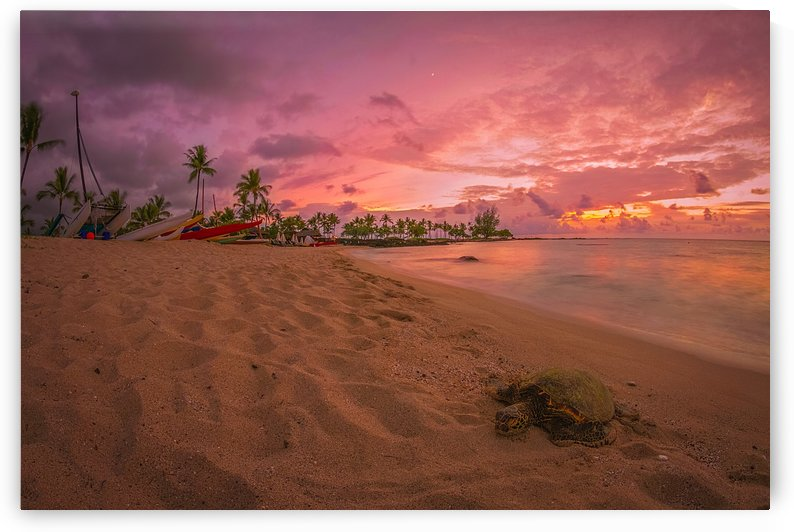 Sunset in Hawaii by Cristian Grigore