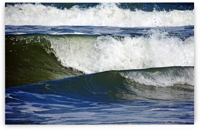 Surf Is Up by Deb Oppermann
