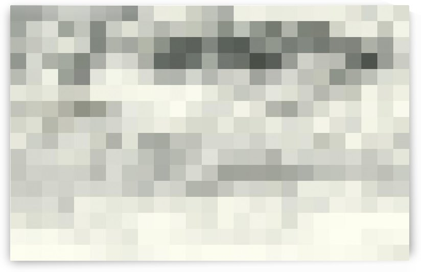 Abstract Pixel Picture -Monochrome white grey and black shades  by Puzbie