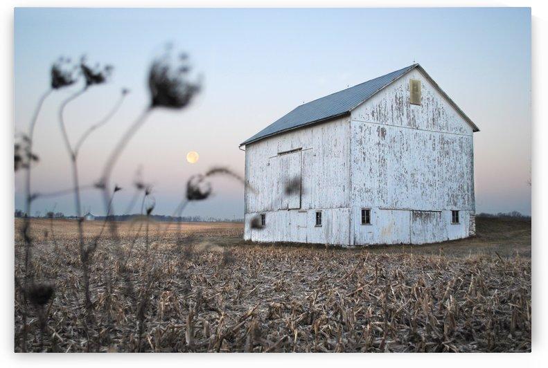 The Old Barn by Brent Luke Augustus