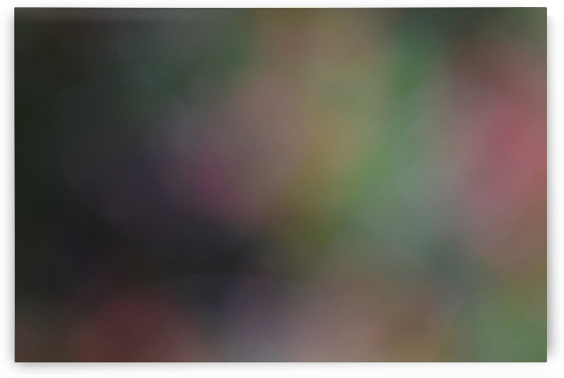 Abstract Art Photograph Bokeh - Red White Yellow and Green by Puzbie