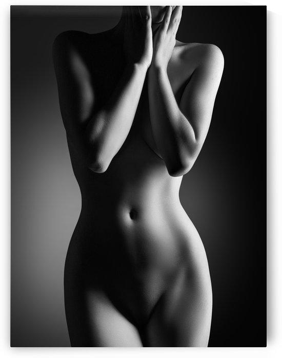 Nude woman bodyscape 24 by Johan Swanepoel